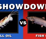 fish-oil-vs-krill-oil_1